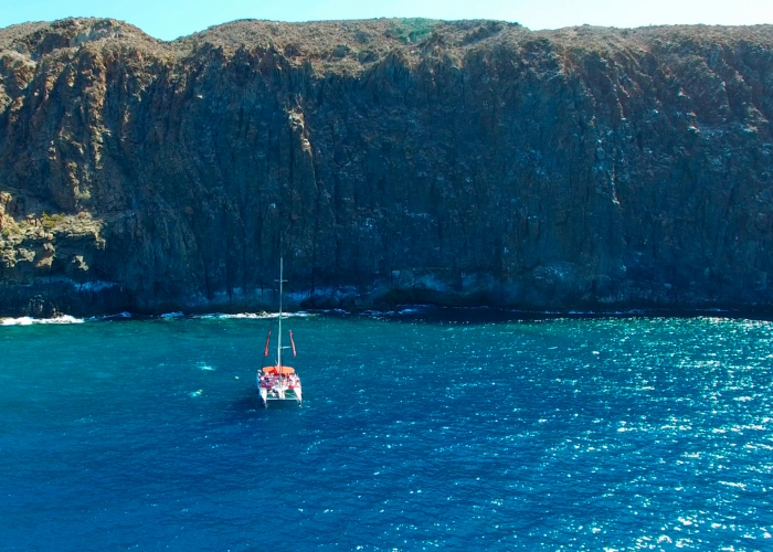 A trip aboard an Eco Catamaran where you'll watch and listen to whales and dolphins and visit Los Gigantes cliffs