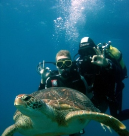 Discover scuba diving with your first dive and experience the underwater world