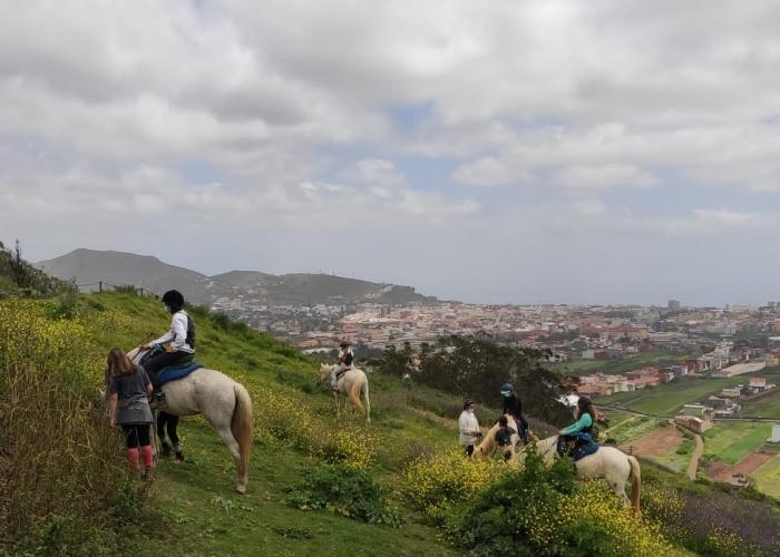 Disfruta de un día en un centro hípico con vistas impresionantes en el norte de Tenerife