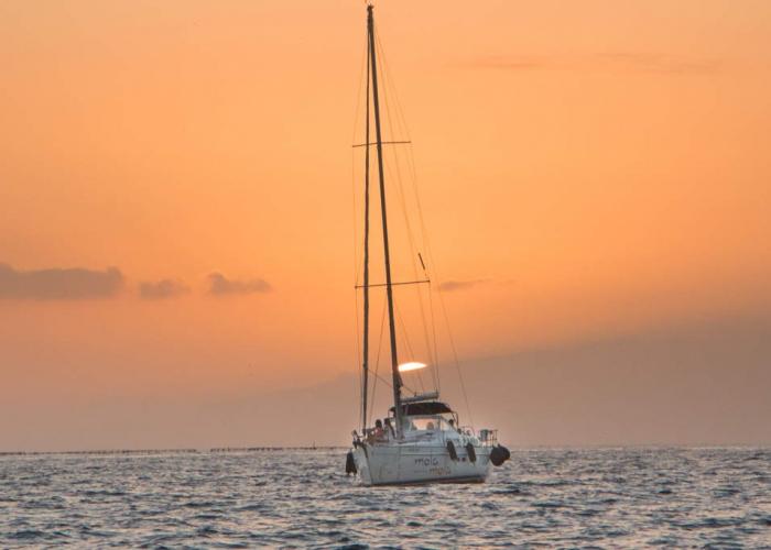 Disfruta del cielo y del mar en este tour de Teide y delfines