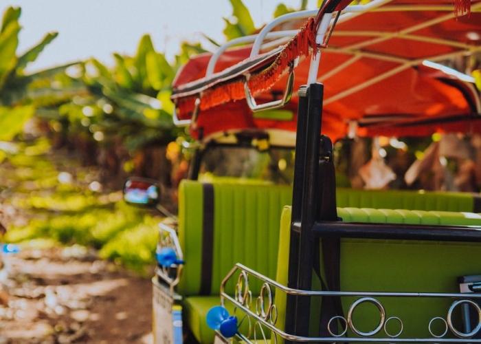 Double Tuk Tuk Tour through Costa Adeje and La Caldera del Rey