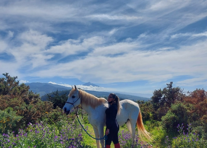 Enjoy a day on a horse riding club with stunning views in the north of Tenerife