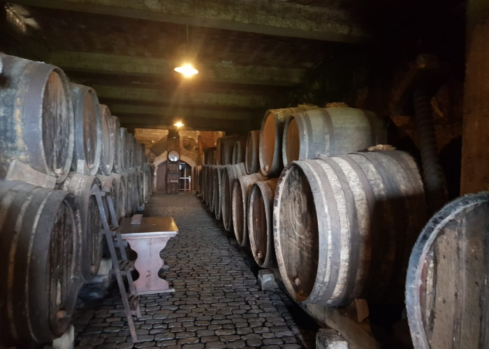 Enogastronomic Tour - discover the unique food and wine from the north of Tenerife