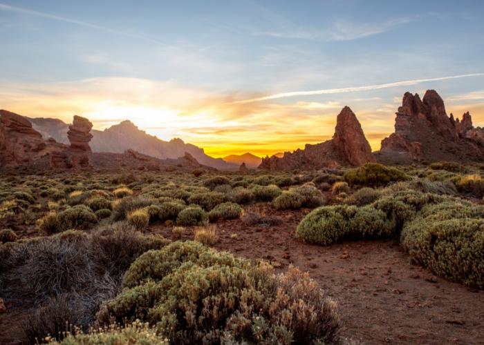 Excursión privada al parque nacional del Teide