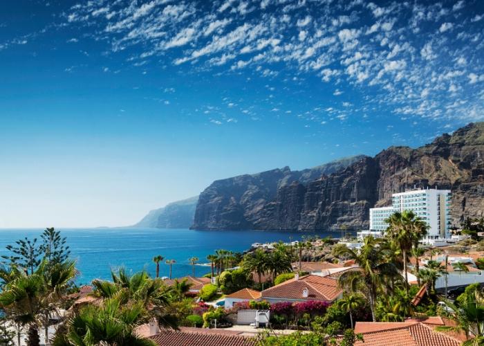 Excursión privada al sur salvaje de Tenerife