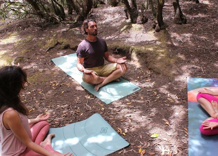 Experiencia Forestal - Shinrin Yoku