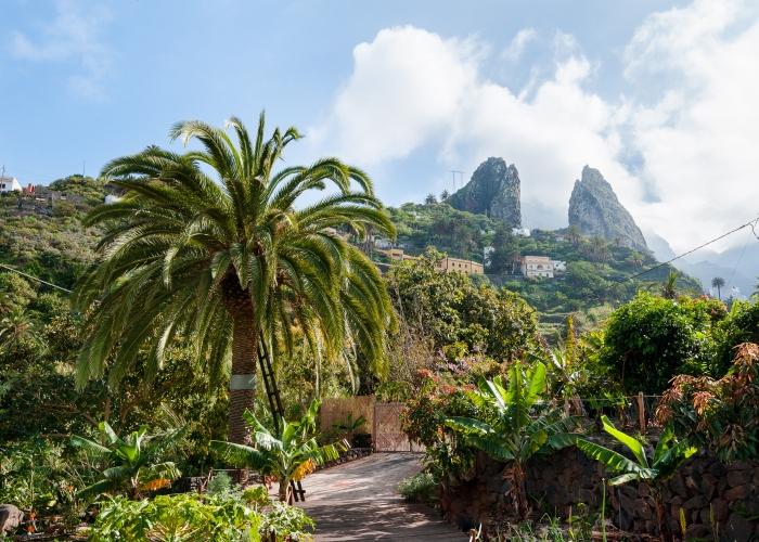 Explore La Gomera in a Day Trip from Tenerife