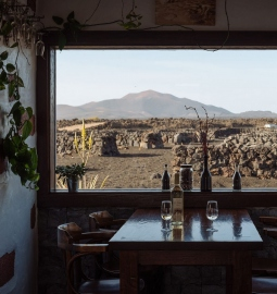 Half-day wine & volcano Tour in Lanzarote with wine tasting