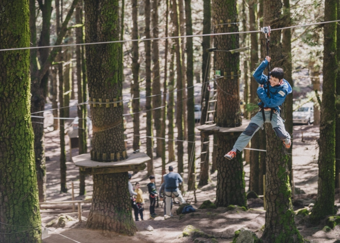 Have a treetop adventure in the biggest forest park of the Canary Islands