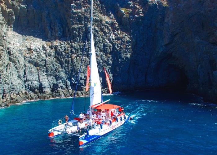 Paseo a bordo de un eco catamarán para ver y escuchar ballenas y delfines y visitar los acantilados de Los Gigantes