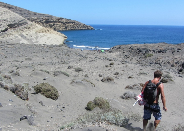 Personalized guided tour to the gorgeous south of Tenerife