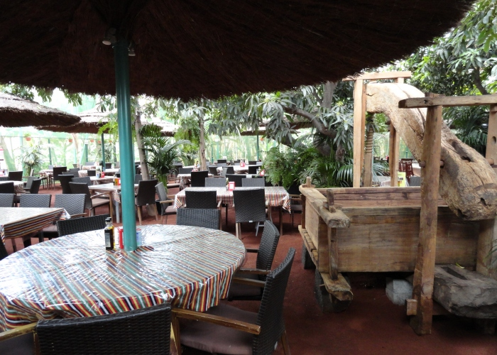 Private gastronomic tour to Masca (including visit to banana farm)
