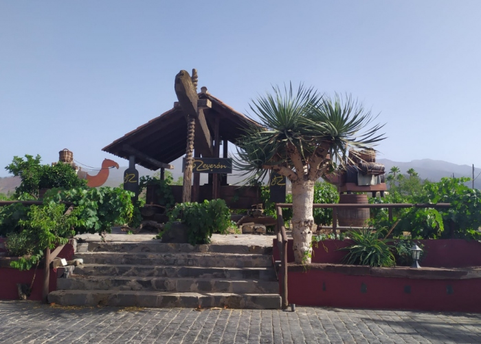 Private Teide tour with winery visit and wine tasting