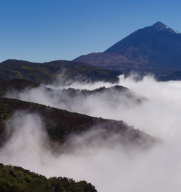 Private Tour to Teide National Park