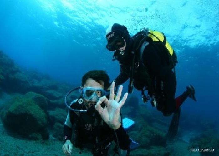 Prueba el buceo con esta inmersión de bautismo y experimenta el mundo submarino