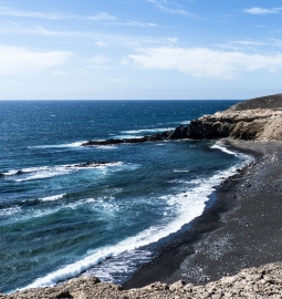 See the wild beaches of Fuerteventura on this half-day hike