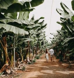 Sesión de fotos personal o para parejas en Tenerife