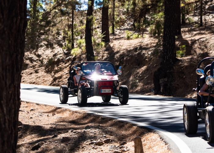 Take a ride in a buggy in this Teide Express Tour