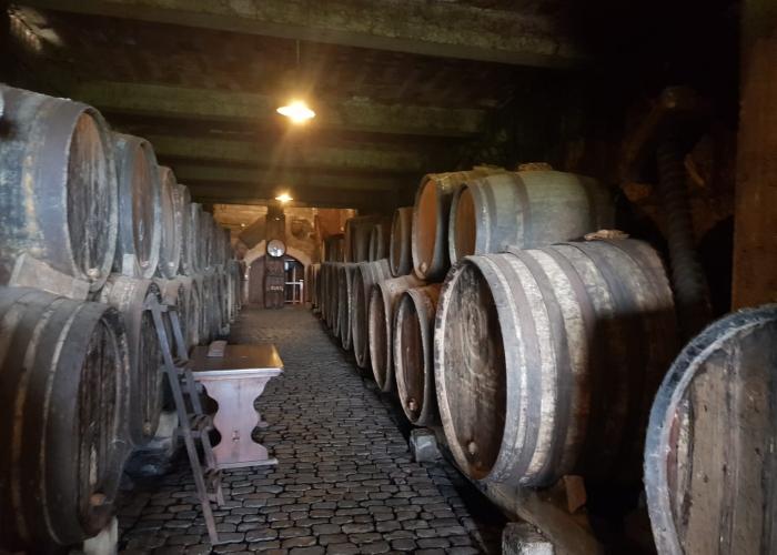 Tour Enogastronómico - descubre la comida y el vino del norte de Tenerife
