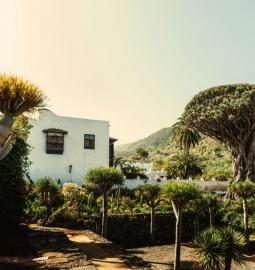 Tour guiado y personalizado para explorar la cultura del norte verde de Tenerife