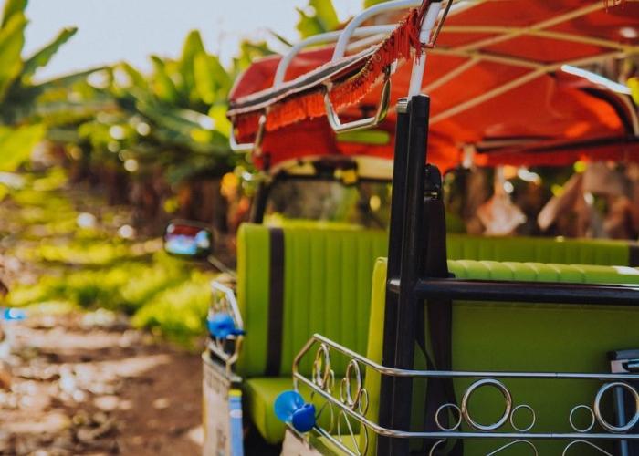 Tuk Tuk Tour por un mercadillo y granja tradicional en el sur de Tenerife