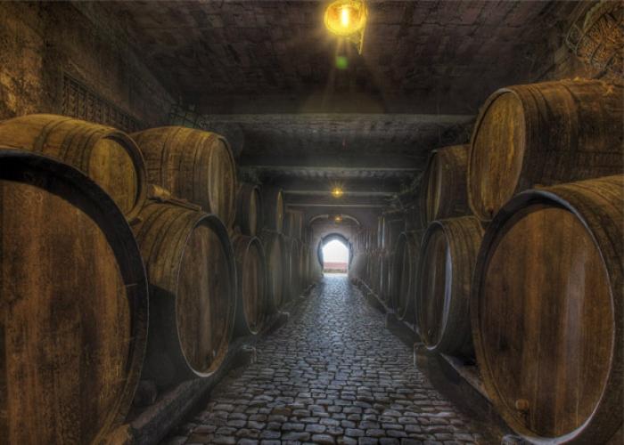 Visita guiada a una Bodega con degustación de vinos y quesos canarios